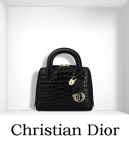 Borse Christian Dior Autunno Inverno 2016 2017 Donna 21